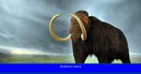 Cómo se extinguieron los mamuts