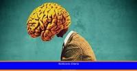 Cómo se producen los nuevos recuerdos en el cerebro