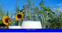 ¿La caseína en la leche es diferente a la de vaca, oveja o cabra? ¿Cómo afecta cada uno a la inflamación del intestino?