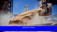 Los agroexportadores liquidaron US $ 3.500 millones en mayo, un récord para ese mes.