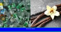 Los científicos transforman botellas de plástico usadas en saborizantes de vainilla utilizando bacterias